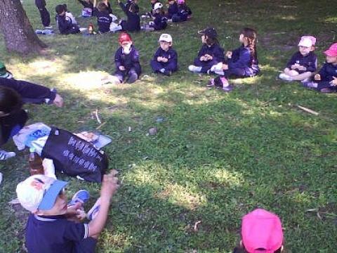 2014: Nivel 3 A visita el Jardín Botánico