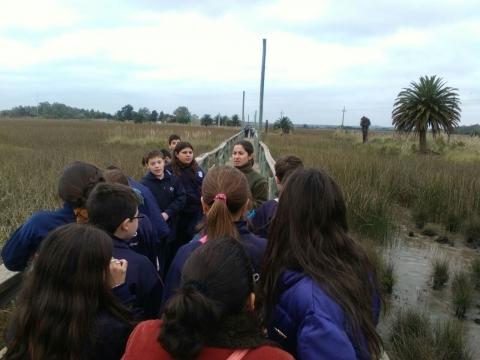 2016: 5º año B y C visitaron los humedales de Santa Lucía