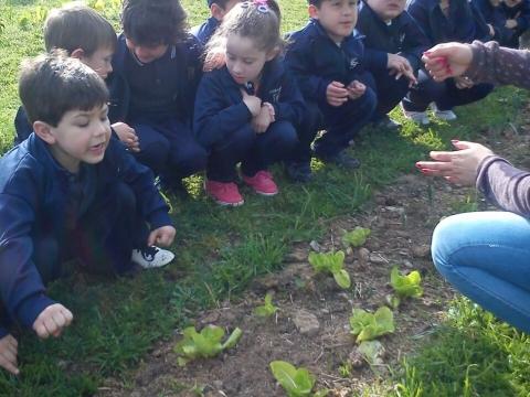 2016: Nivel 5 A visitó granja Rincón del sol en Melilla
