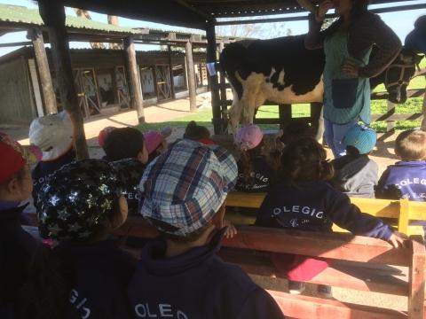 2016:  Nivel 2 y 3 A visitaron la granja Rincón del Sol