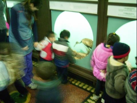 2013_Museo_zoo_061